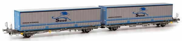 SURM05517 Sudexpress Doppel-Containerwagen Laagrss der RENFE